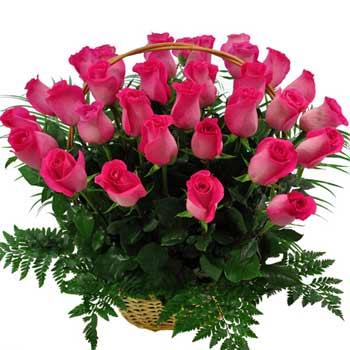 Цветочки в городе Одесса 1065