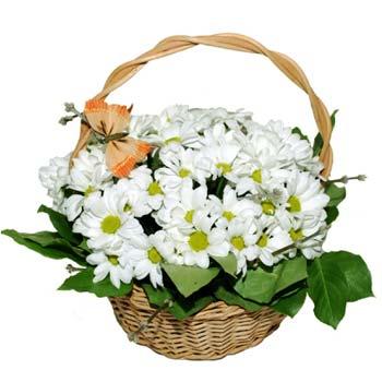 Заказ и доставка цветов в одессе через интернет магазин цветов, купить букет роз в москве с доставкой киев